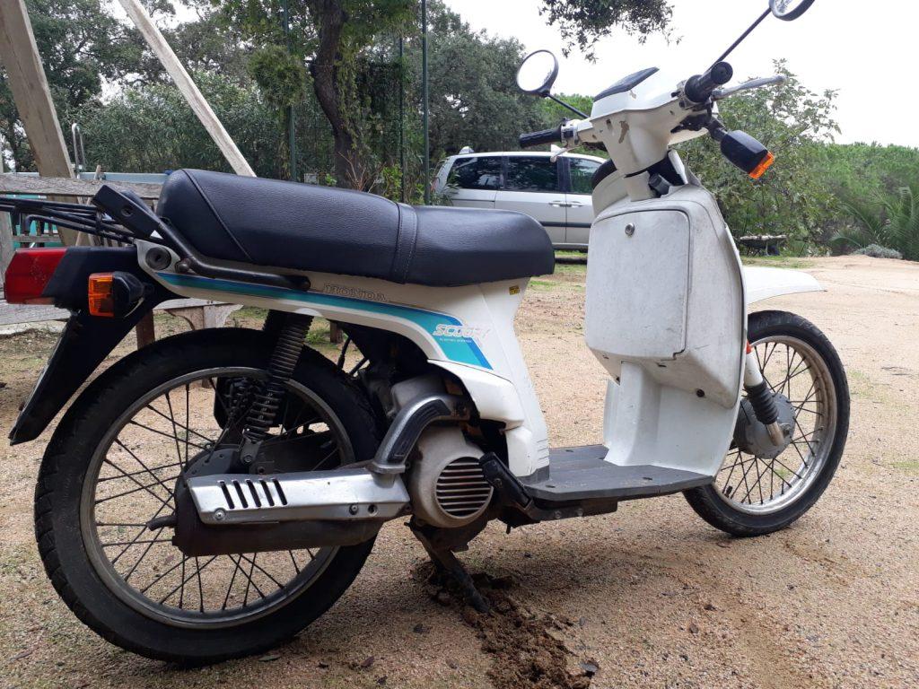 Restauració Honda Scoopy 75
